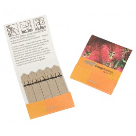Custom 5 Stick Pack